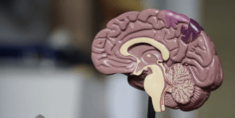 Train your brain to improve your memory